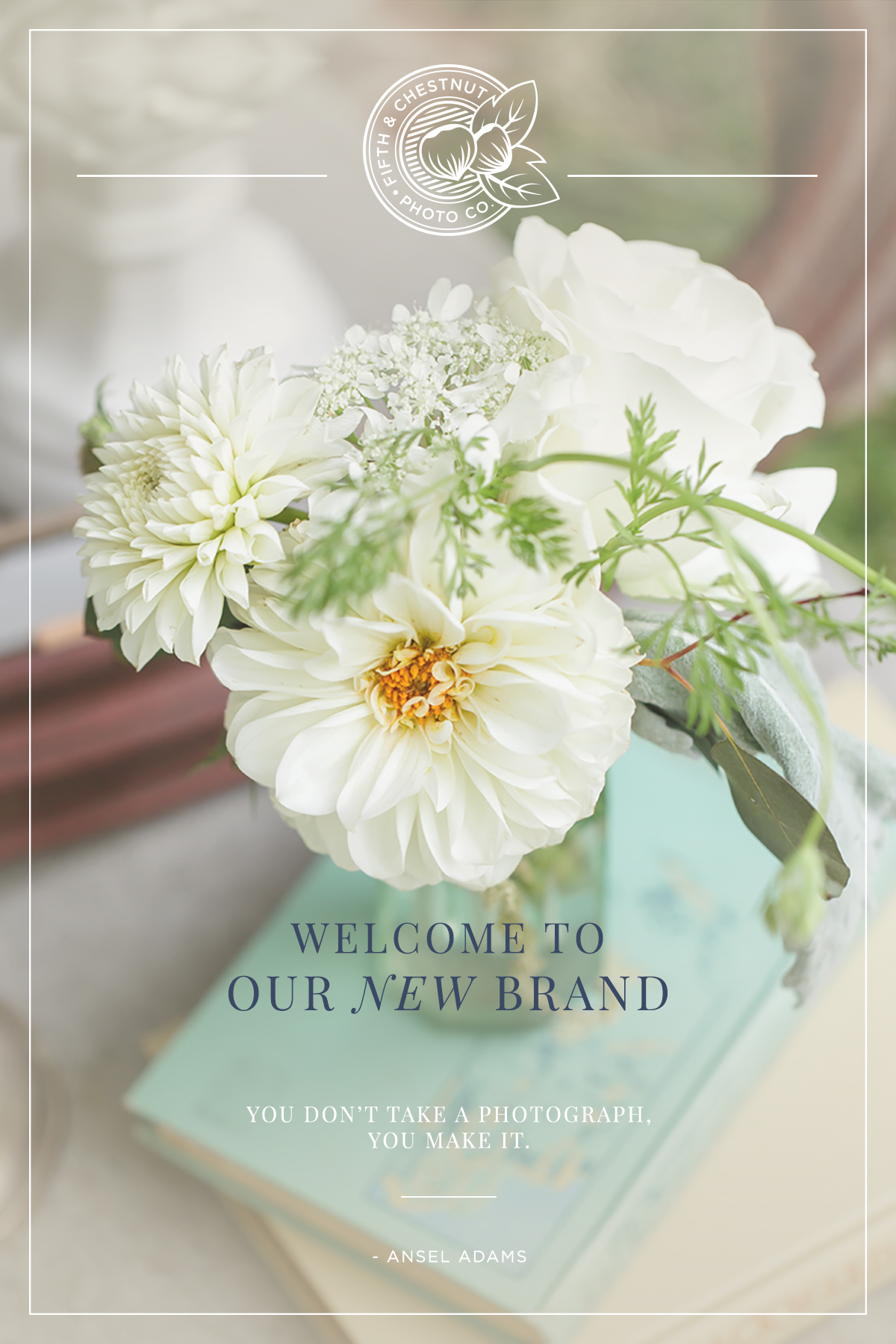 Our Photography Rebrand | Welcome to Fifth & Chestnut