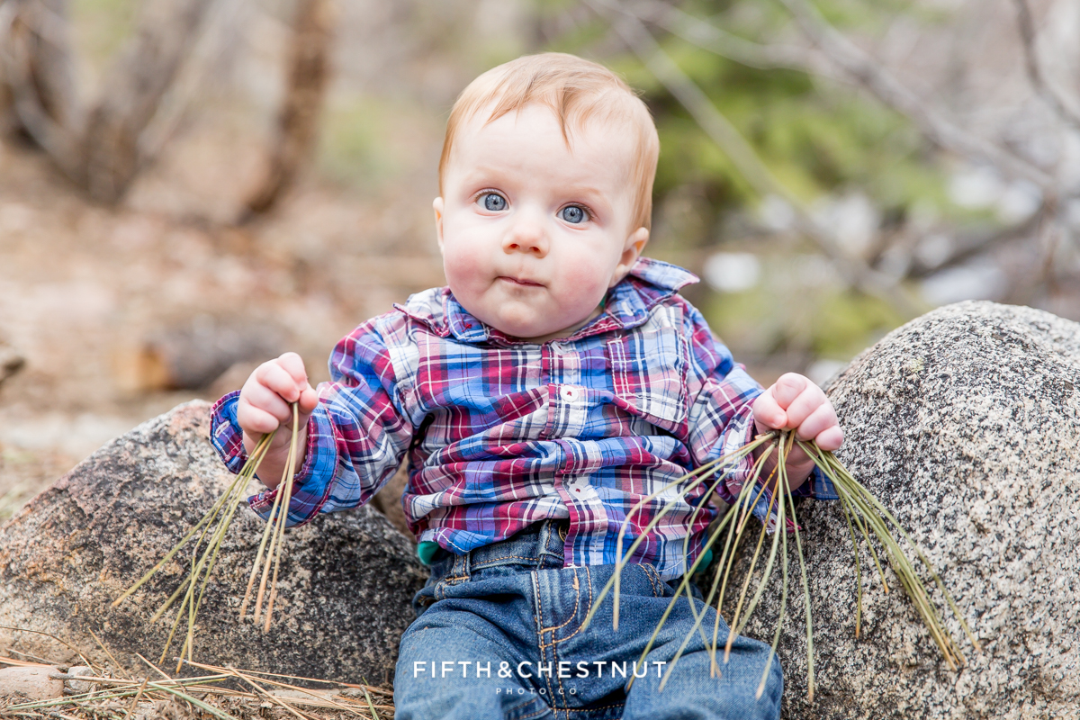 Early Spring Reno Family Portraits by Reno Family Photographer