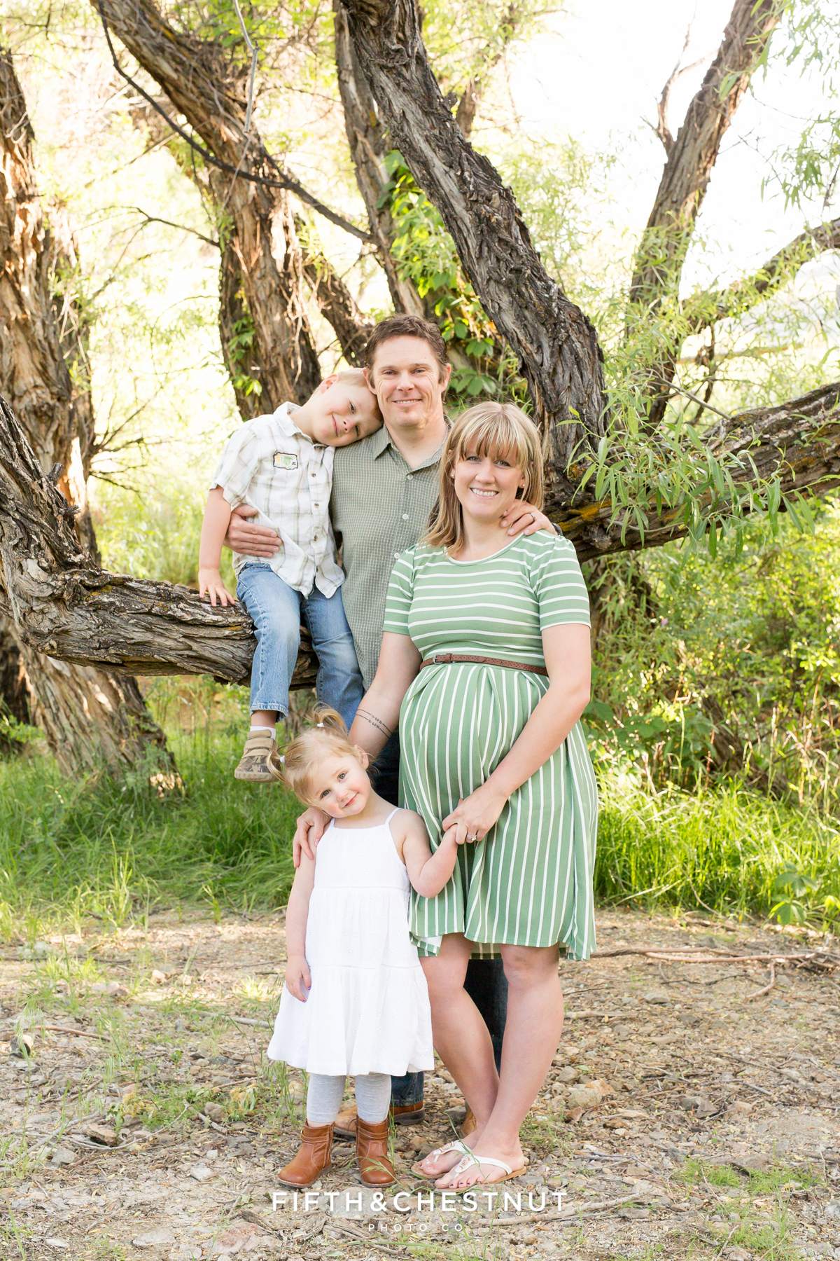 A family portrait by reno maternity photographer during a maternity photography session in reno