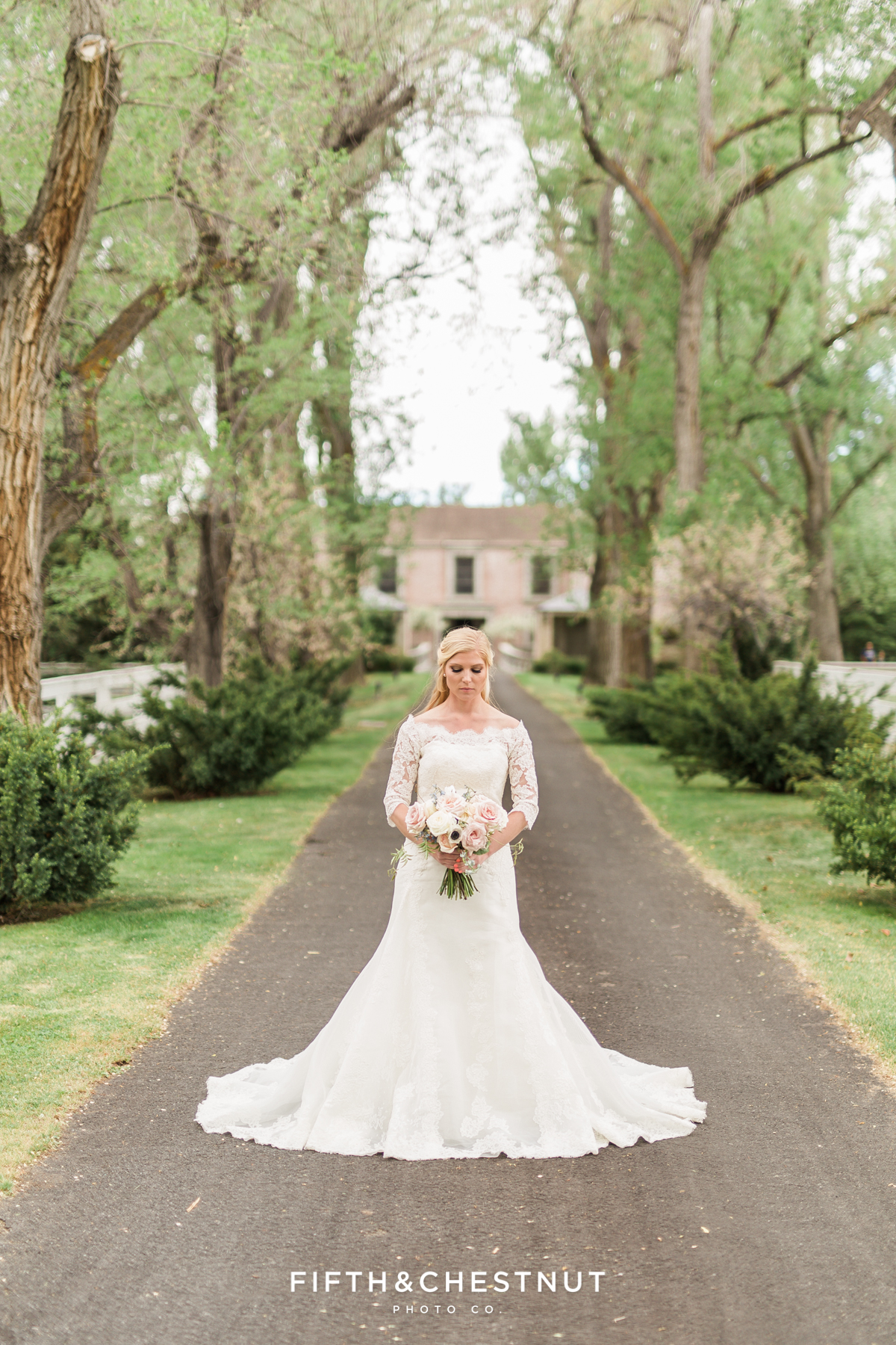 Bride standing in oak-lined path leading to an elegant private estate