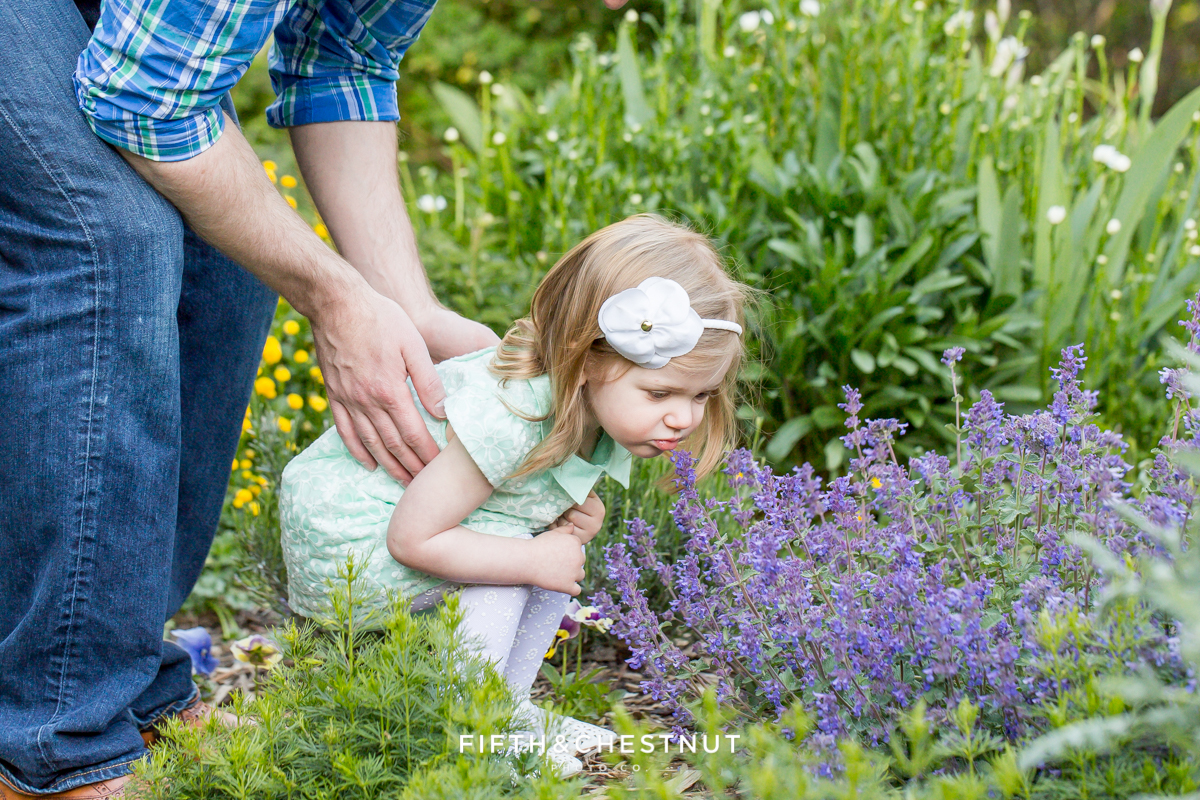 two year old girl sniffs flowers with her dad at rancho san rafael as photographerd by Reno Family Photographer