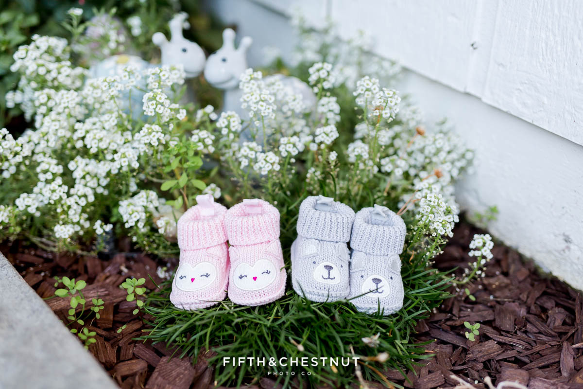 Twin Gender reveal with pink booties and gray booties in a garden