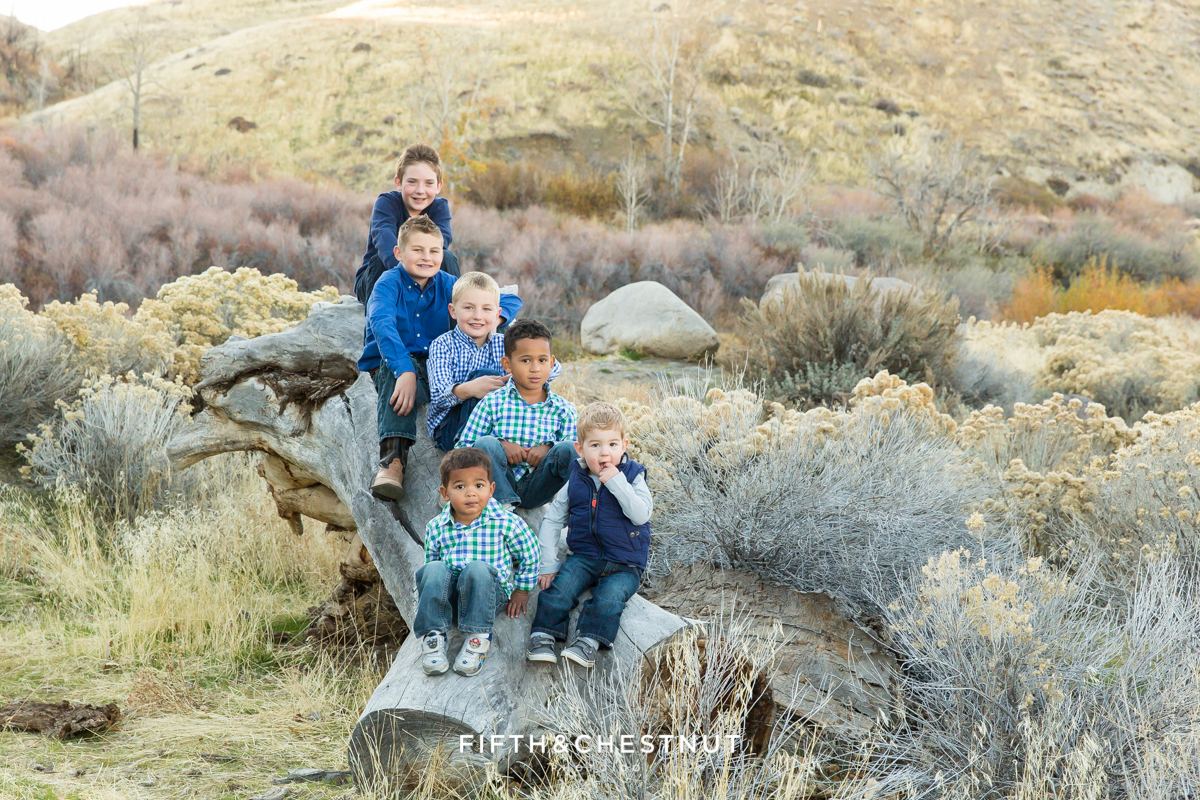 Mayberry Park Portraits of six boys sitting on a fallen tree by the river