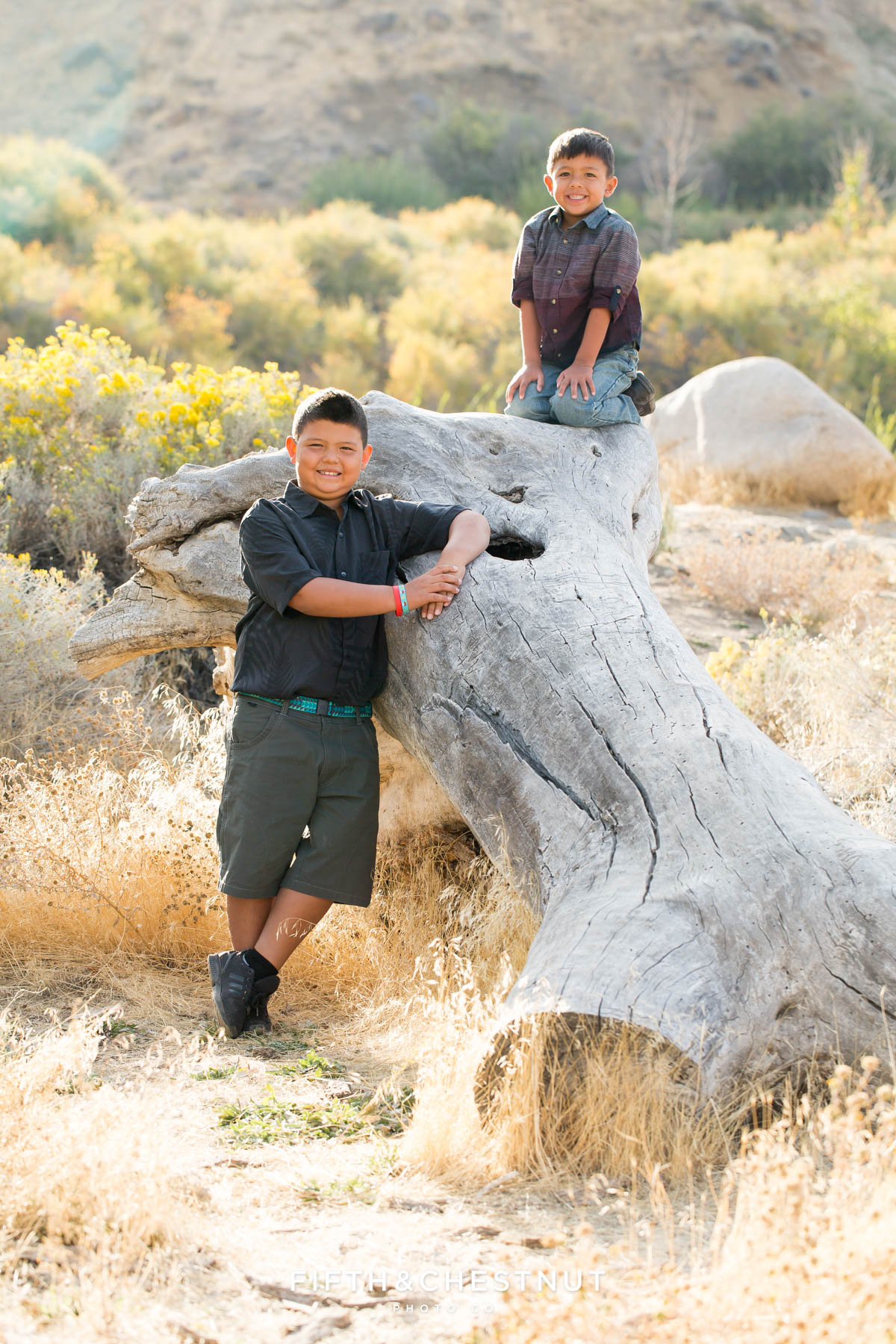 two children from hawaii pose on a fallen log for vibrant fall portraits at Mayberry Park