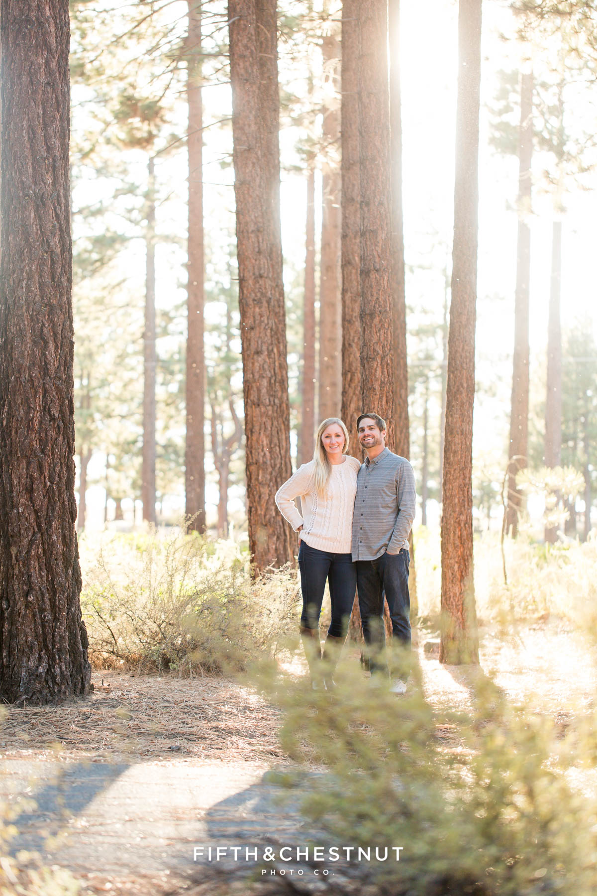 Couple stands below towering pine trees during their fall Nevada Beach engagement