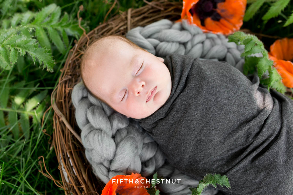 A close up outdoor newborn portrait of a newborn baby boy laying in a padded nest surrounded by poppies for his Reno newborn photos by Reno Newborn Photographer Fifth and Chestnut Photo Co.