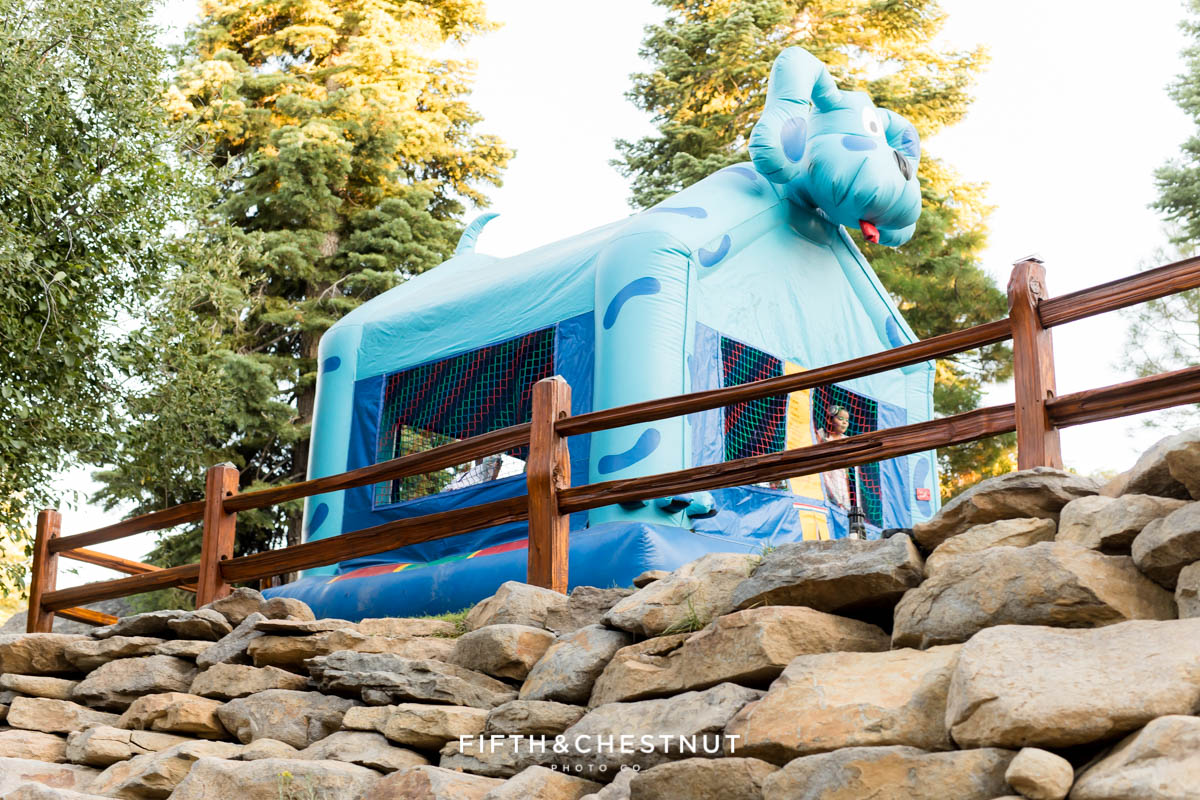 Romantic Disney Wedding in Glenshire California by Lake Tahoe Wedding Photographer