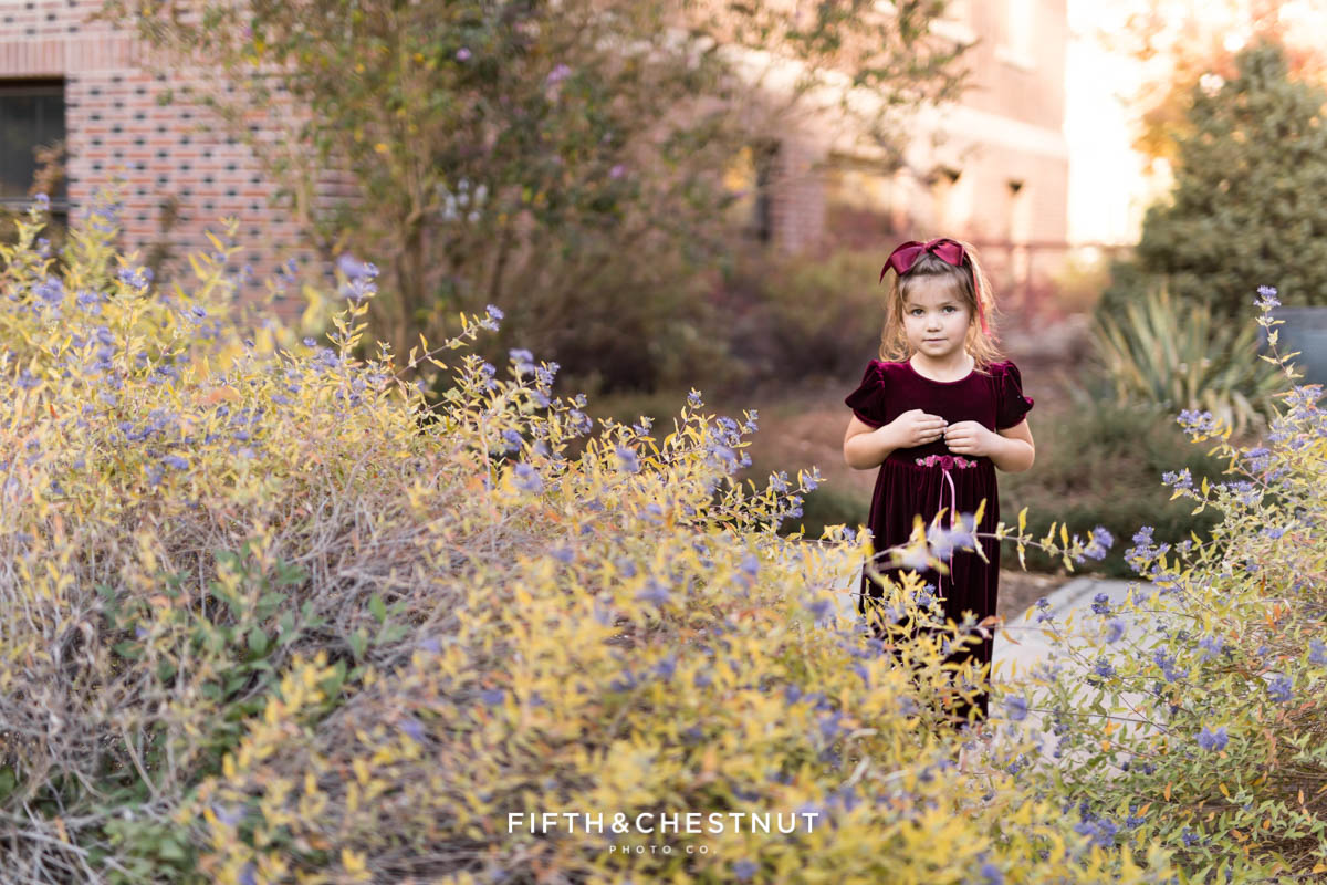 a young girl stands in a field of wildflowers and a crushed velvet dress during her fall portraits by Reno Family Photographer