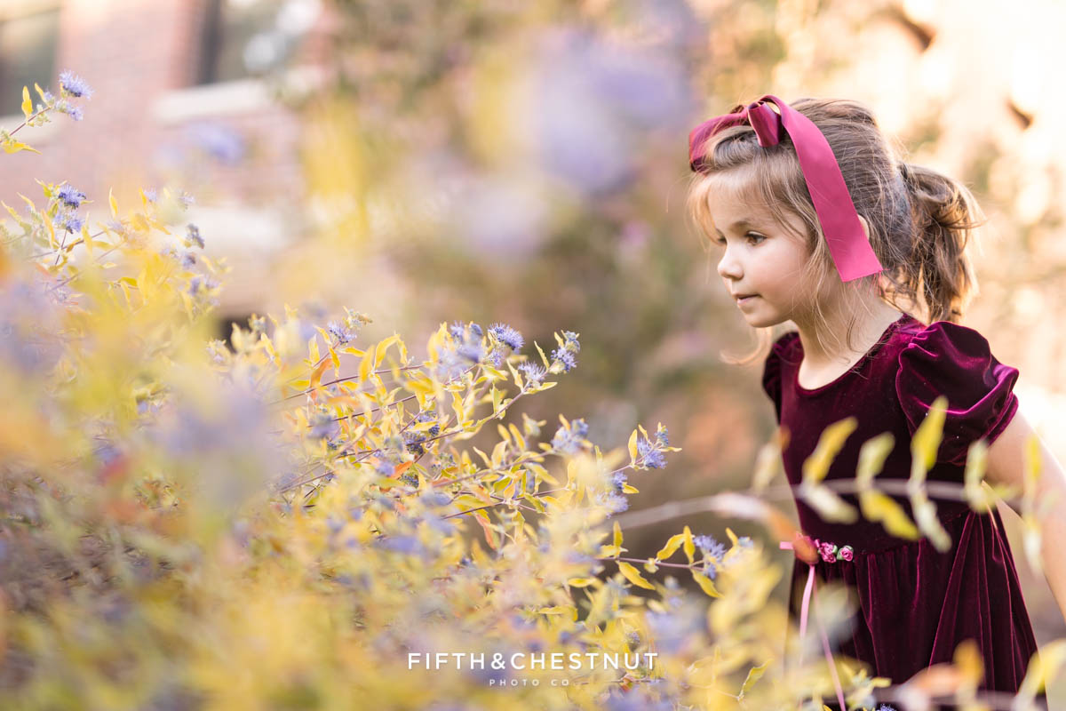 a little girl spots a bee in a field of flowers during reno family portraits by Reno Family Photographer