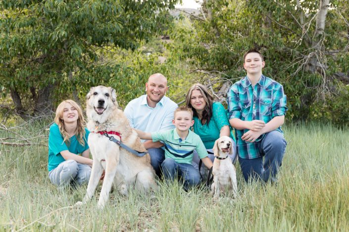 Family of five sitting in a field with their dogs for portraits by Reno Family Photographer