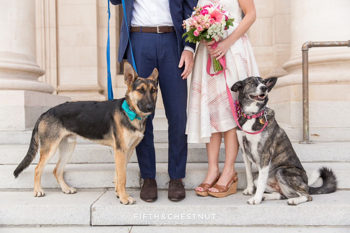 Dogs with bride and groom during a Downtown Reno elopement by Reno Wedding Photographer