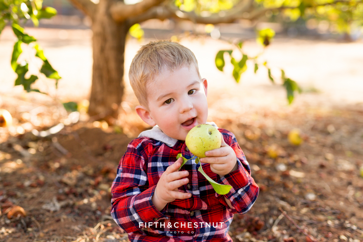 A Day at Apple Hill with the Dryden Family | Lake Tahoe Family Photographer