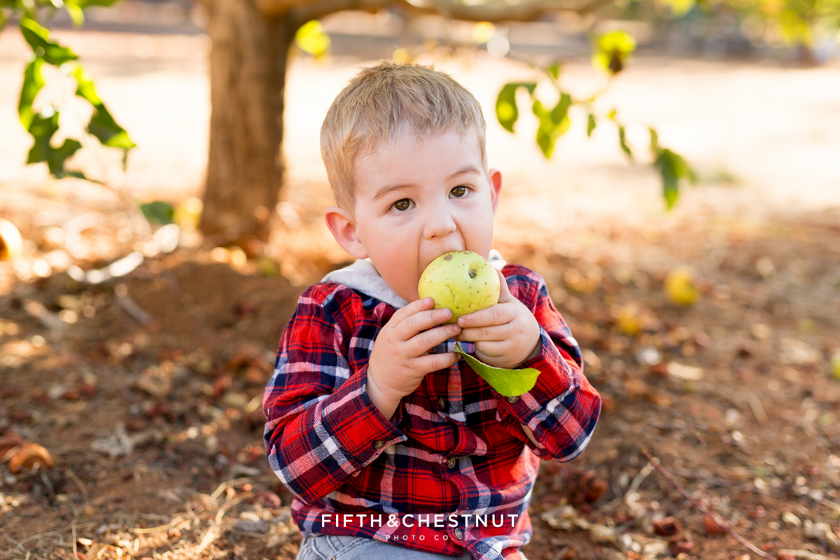 A day at Apple Hill by Lake Tahoe Family Photographer