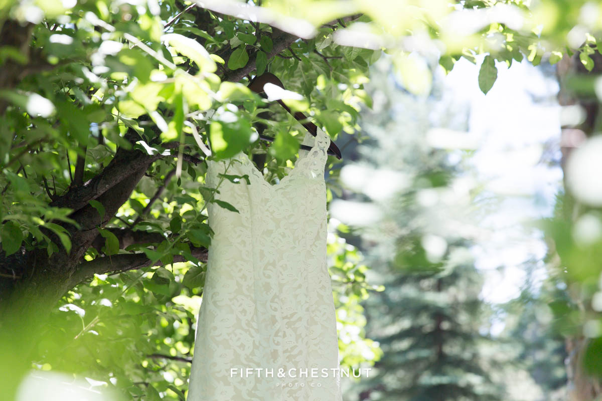 Custom wedding gown made in Ecuador for a North Lake Tahoe Wedding by Lake Tahoe Wedding Photographer hangs in a green tree