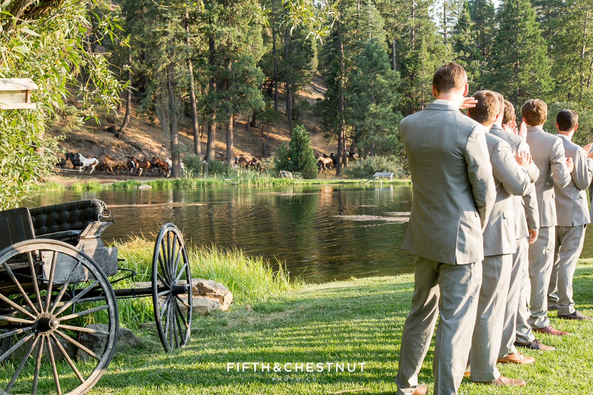 guests watch horses run behind the pond at a Greenhorn Creek Guest Ranch Wedding
