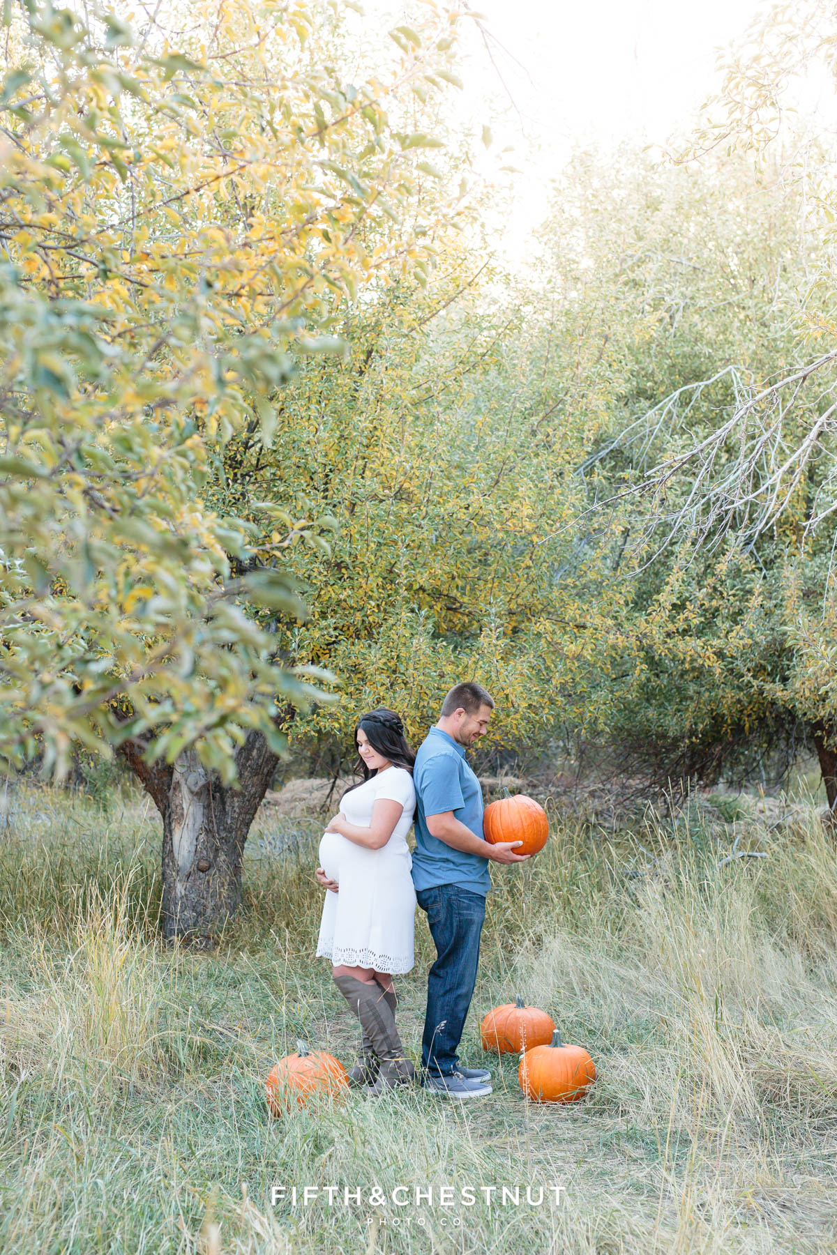 Husband and his pregnant wife stand back to back in an apple orchard surrounded by pumpkins while he looks down at a pumpkin he's holding and she looks down at her baby bump for their fall maternity portraits