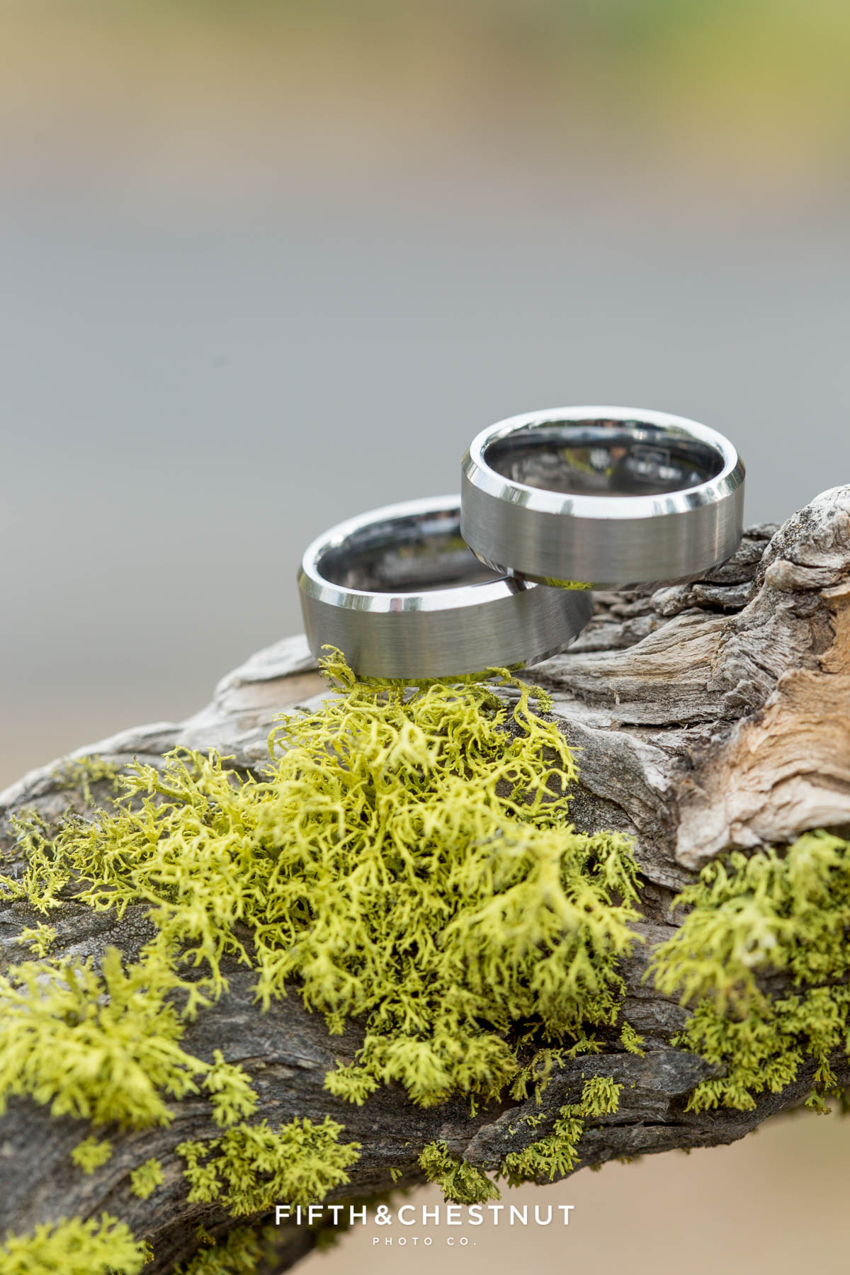 Grooms' rings sit on moss for their PJ's at Gray's Crossing wedding