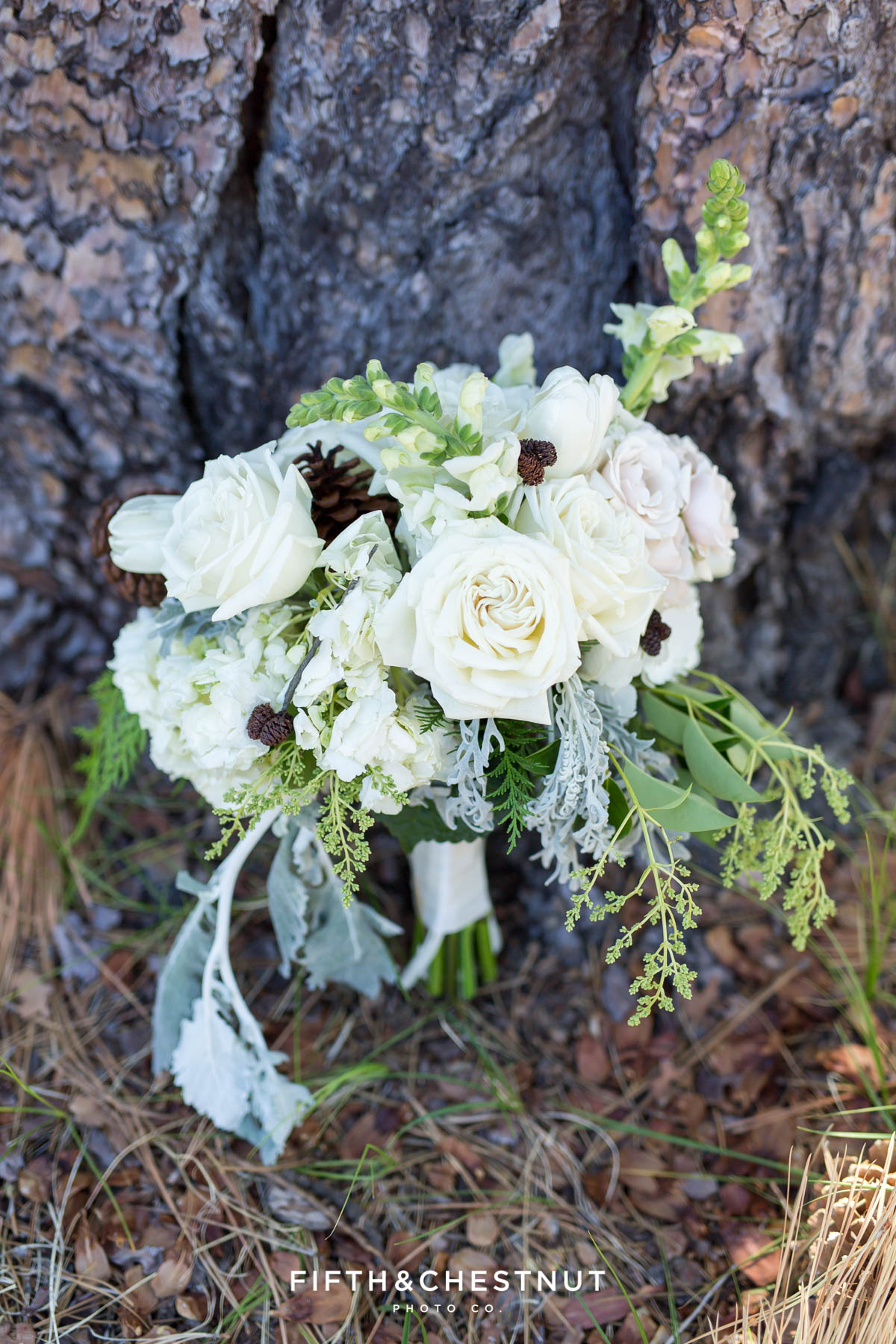 bouquet resting against tree by twine and dandy before a zephyr cove wedding on a summer day