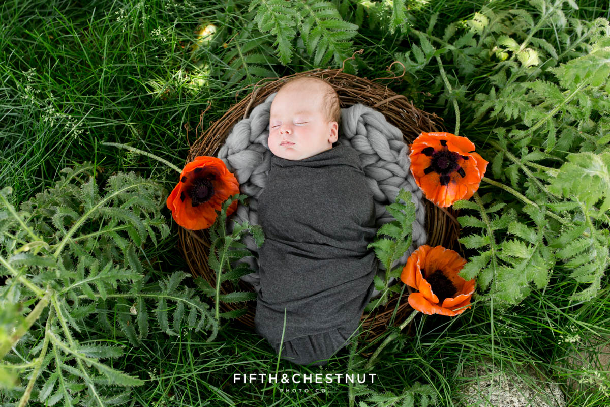 A fine art outdoor newborn portrait of a newborn baby boy laying in a padded nest surrounded by poppies for his Reno newborn photos by Reno Newborn Photographer Fifth and Chestnut Photo Co.