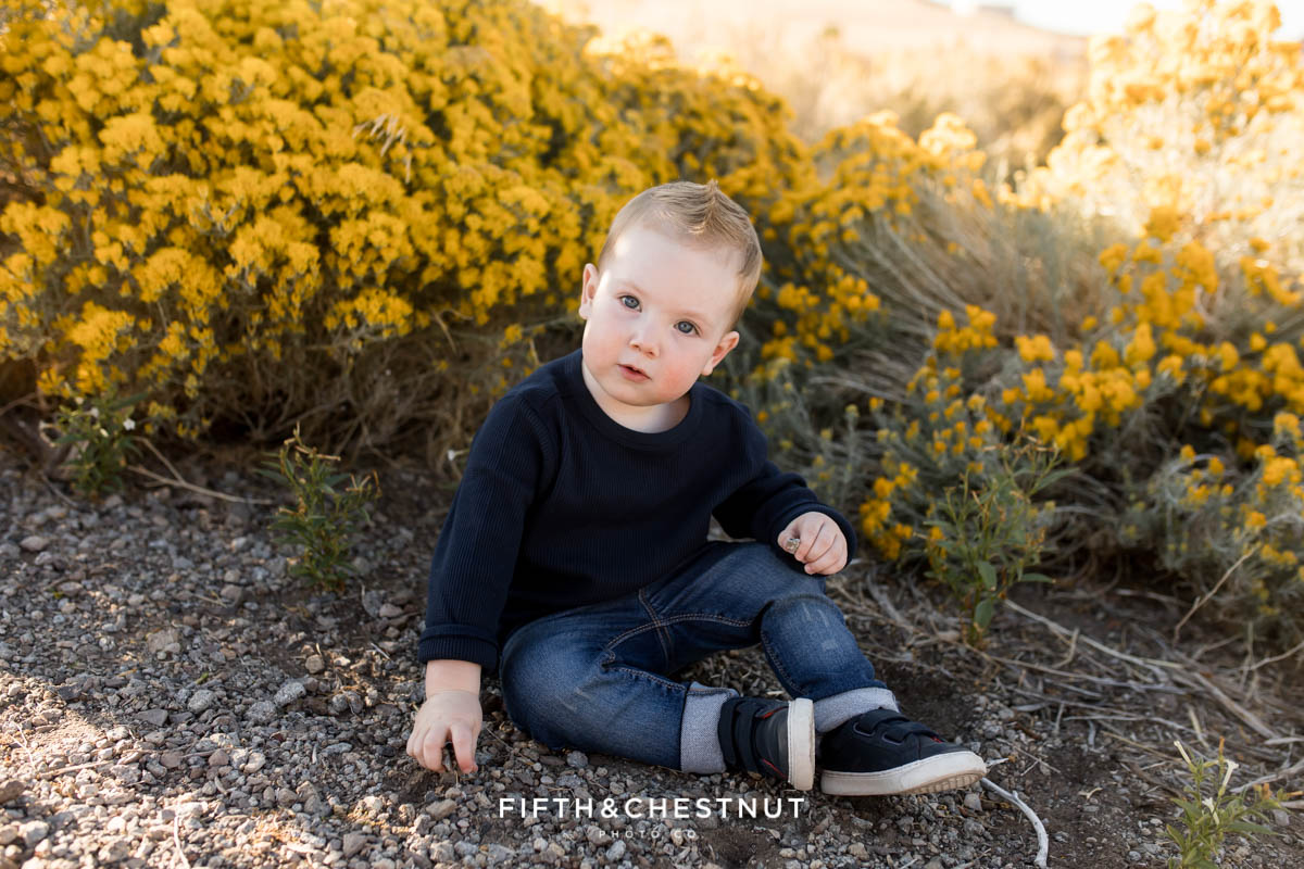 Adorable Fall Desert Two Year Portraits of Theo by Reno Child Photographer