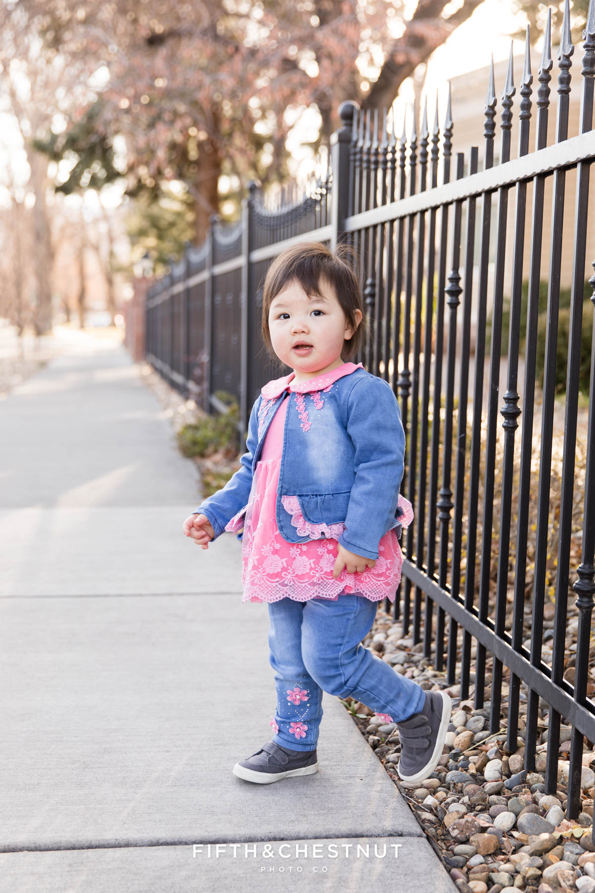 2 year old wears pink and denim along a rod iron fence for her Reno 2 year portraits