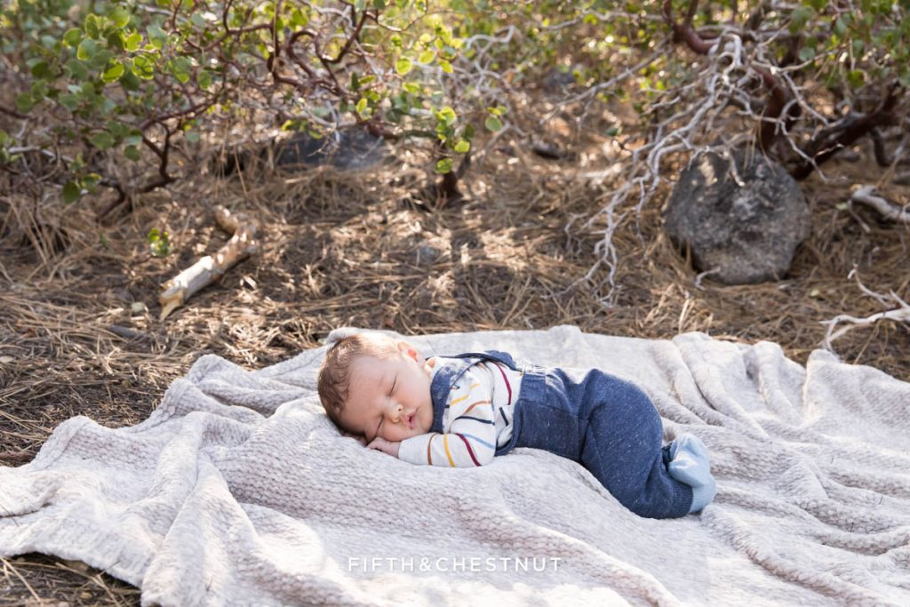 A baby boy wearing striped and heathered blue overalls lays on a picnic blanket for spring outdoor newborn portraits by Reno Newborn Photographer
