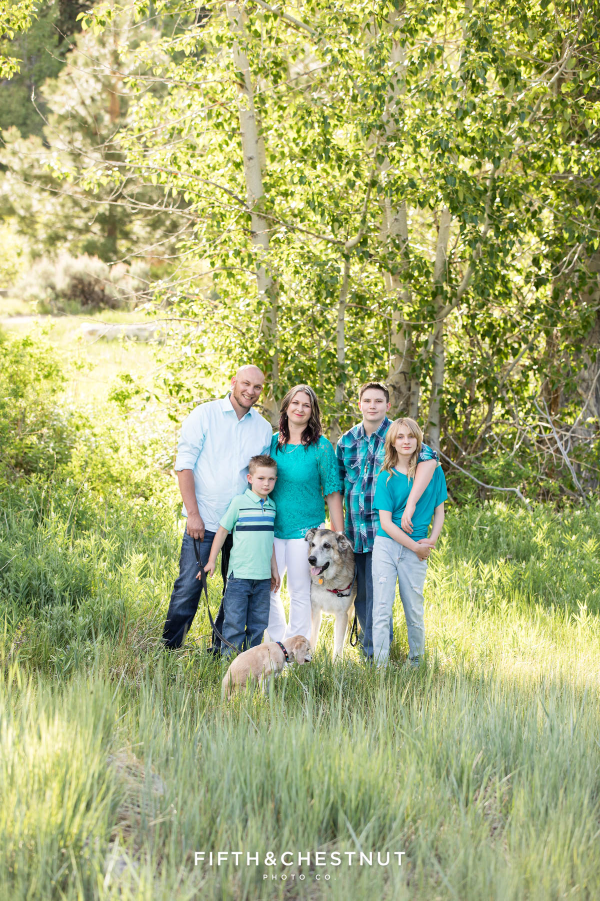 Family standing in a field with their dogs wearing colorful outfits for their reno family portraits